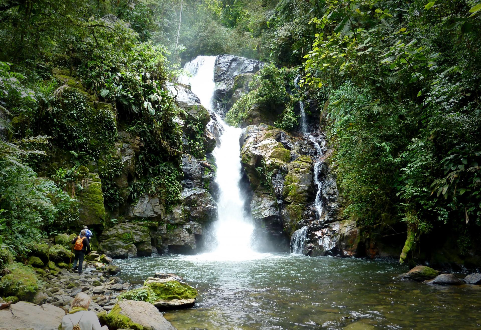 Waterfall : Cachoeira do chá
