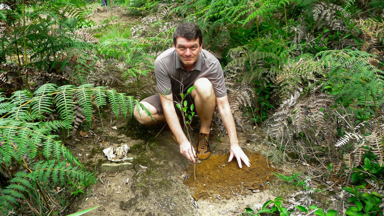 Reforestation with a German journalist