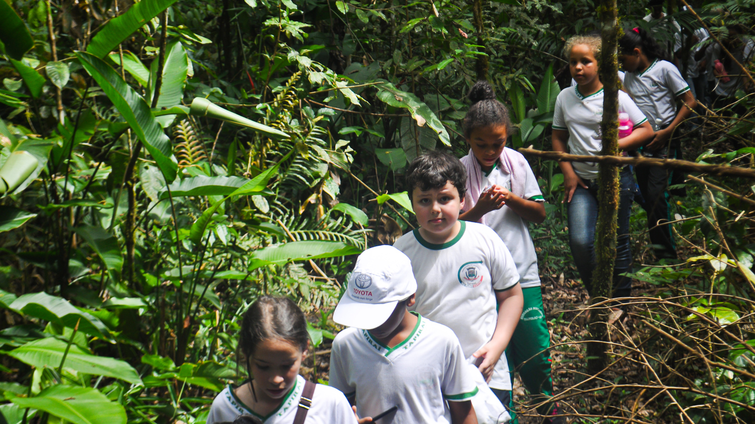 Children's environmental education
